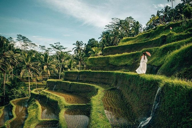 Best Ubud Tour: Nature, Temple, Rice Terrace, Waterfall and Coffee Tour